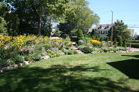 flower bed in Cotuit, MA