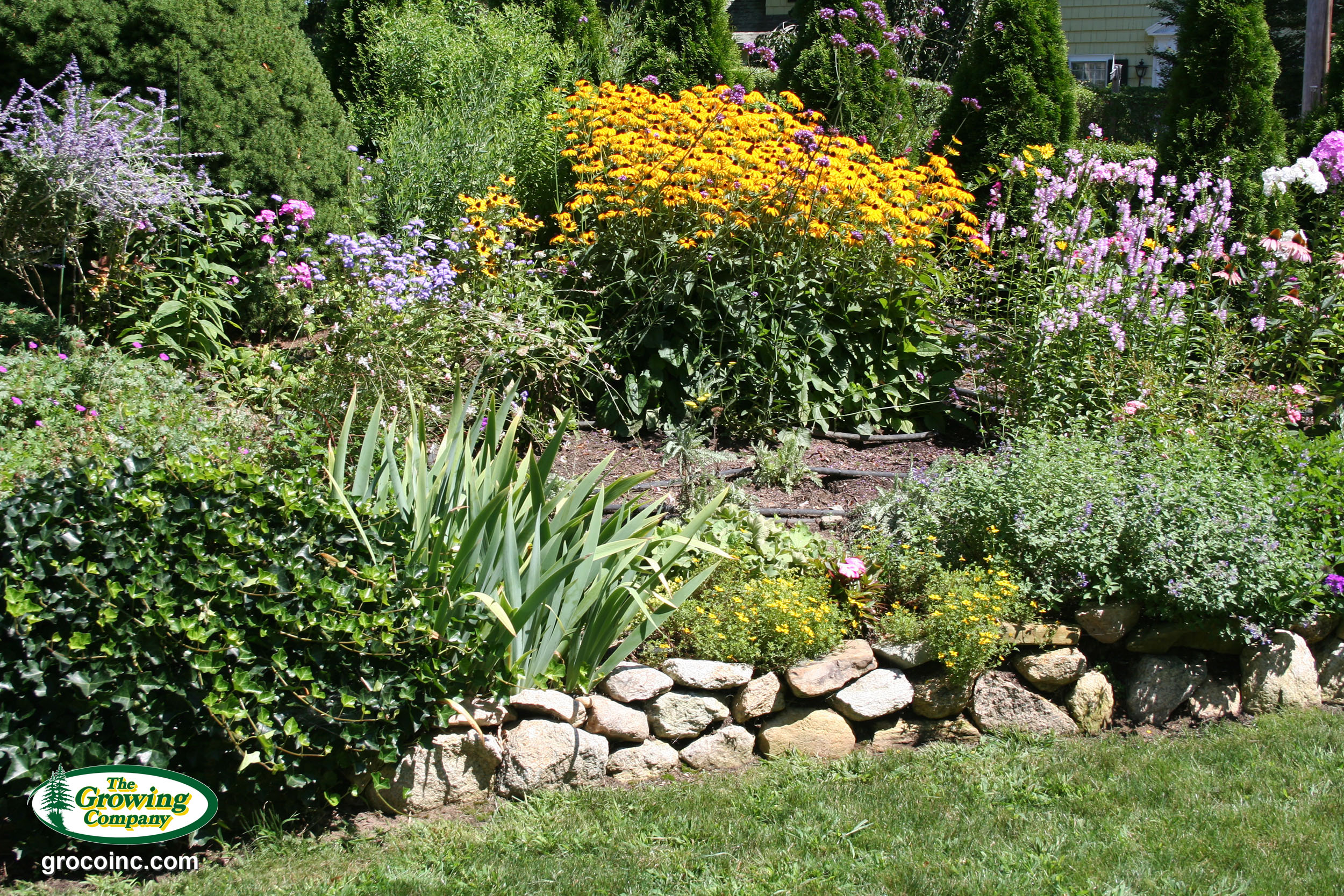 Annual flower bed preparation for cotuit osterville chatham flowers in chatham ma izmirmasajfo Image collections