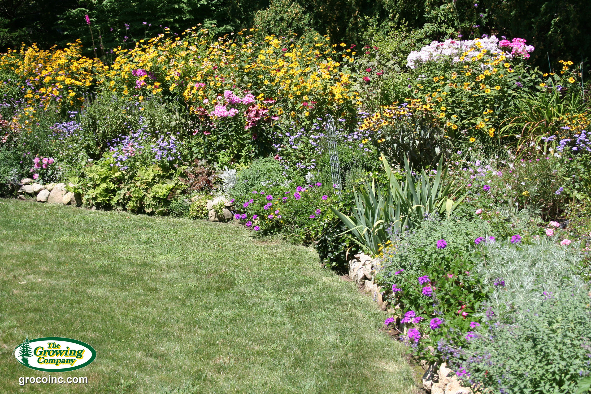 Delighted flower bed plants photos landscaping ideas for for Best plants for flower beds