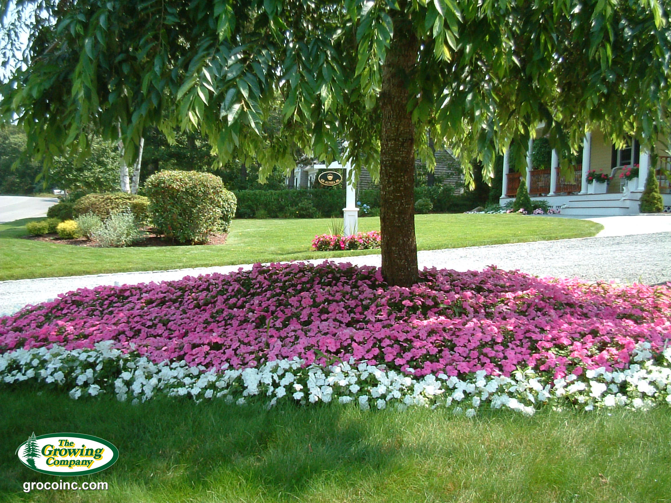 Annual flower bed preparation for cotuit osterville chatham flowers in cotuit ma izmirmasajfo